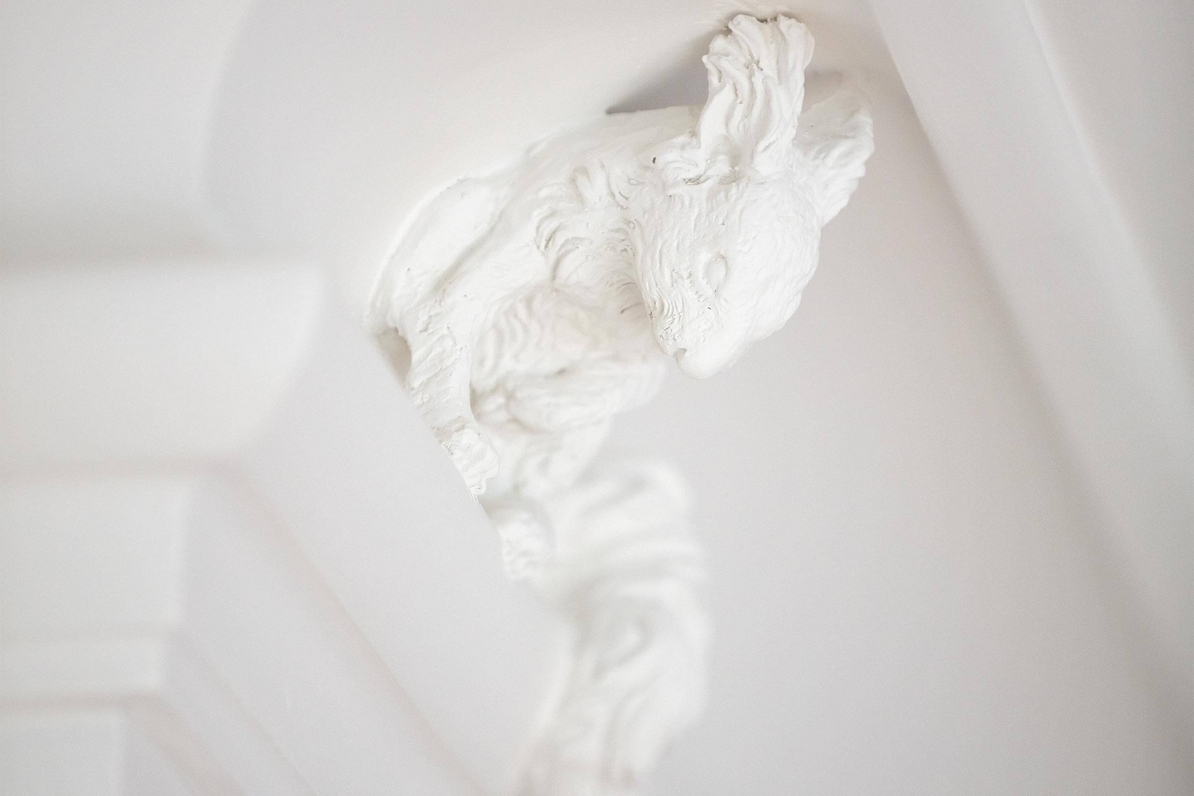 stucco modelling stucco ceiling cornice squirrel claus lind © plaster stucco worker